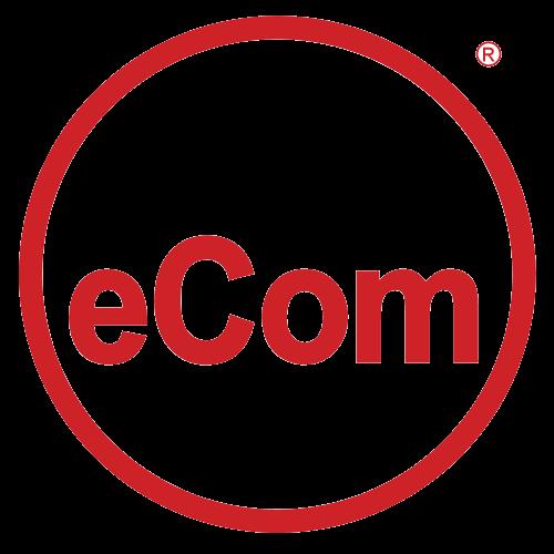 eComSystems